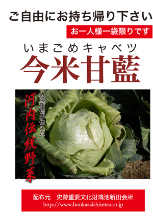 https://konoikeshindenkaisho.jp/wp-content/uploads/2019/11/cttn_seeds.pdf